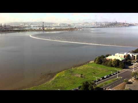 Japanese Earthquake Tsunami Wave arrives in Emeryville CA