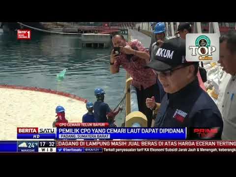 Pemilik Minyak Sawit Mentah yang Cemari Teluk Bayur Dapat Dipidana Mp3