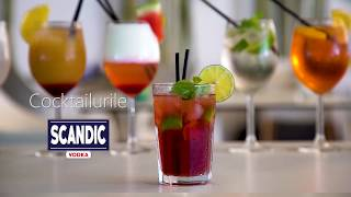 How to make a Vodka Tonic with SCANDIC VODKA