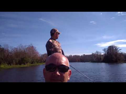 Lake Talquin Fishing Dec 2017