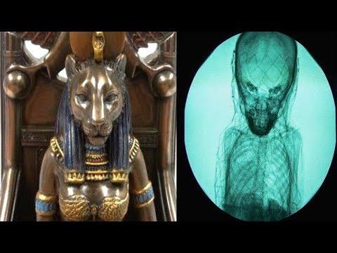 Mısırda Yapılan İnanılmaz