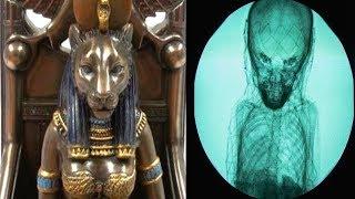 Mısırda Yapılan İnanılmaz Keşif HERKESİ ŞAŞKINA ÇEVİRDİ