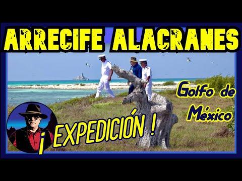 Arrecife Alacranes Expedición