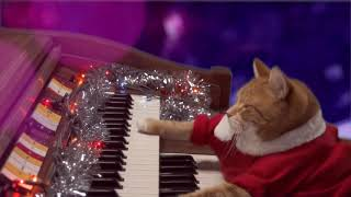 KEYBOARD CAT Santa Clause Is Coming To Town! 2017