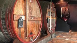 Visit of the Port wine cellar of Burmester in Porto | Caves Burmester | Porto, Portugal
