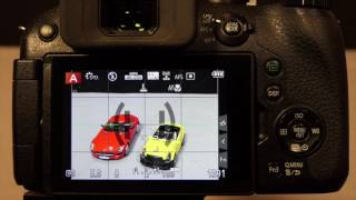 Setting Up Back Button Focus on Panasonic Cameras