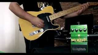 DigiTech BAD MONKEY Tube Overdrive - Júnior Ferreira