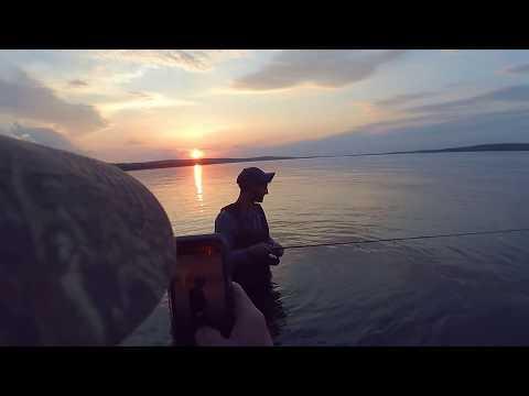 INSANE Wade Fishing! Chautauqua Lake!