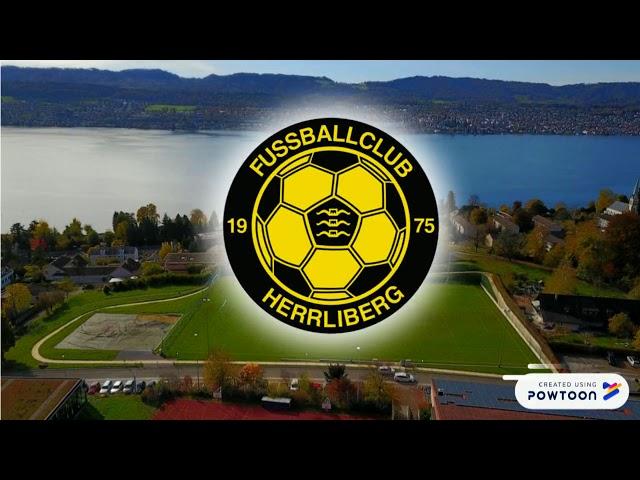 Gruppeneinteilung FC Erlenbach 2018