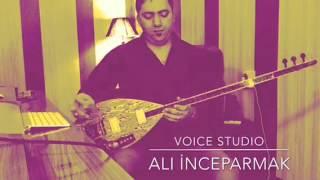 Ali inceparmak Voice Studio