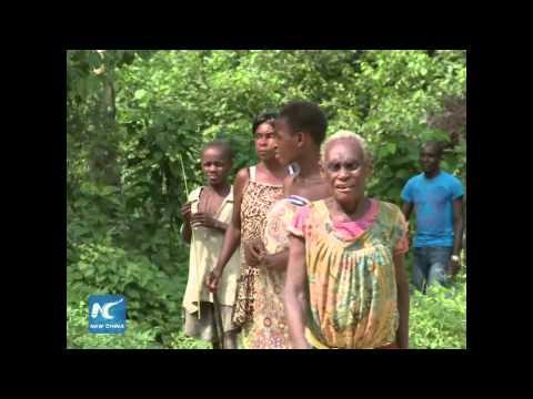 African Pygmy: a mysterial dwarf tribe