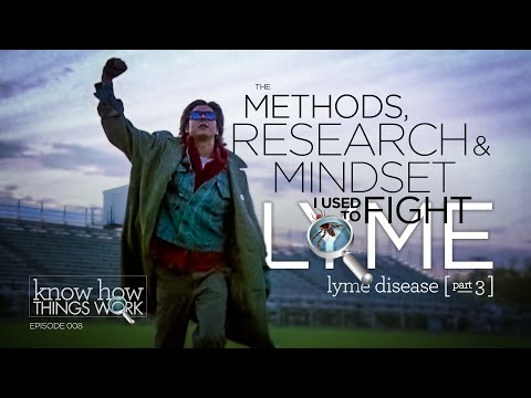 Lyme Disease: My Journey To Health (The Methods, Research &