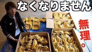 【無理】バナナ1700本が処理できないので最終手段に出ます。 thumbnail