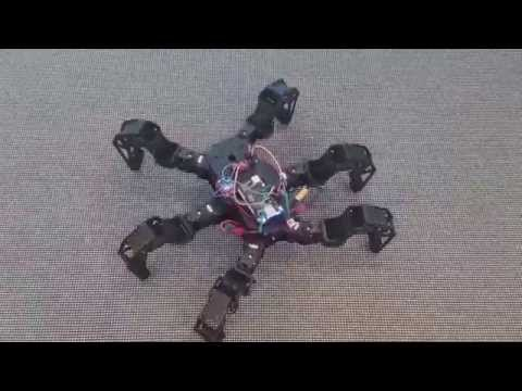 Model-Based Control of Hexapod