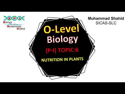 O-Level, Biology, Paper-I, Topic 6 Nutrition in Plants