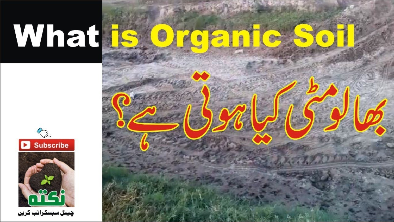 What is organic soil clay soil youtube for Define organic soil