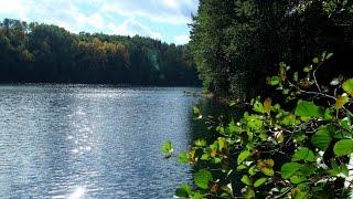 Погружение в озеро Липовое (Липовское)  diving on lake Lipovoe