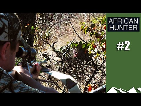 Close-range Buffalo - African Hunter Episode 2
