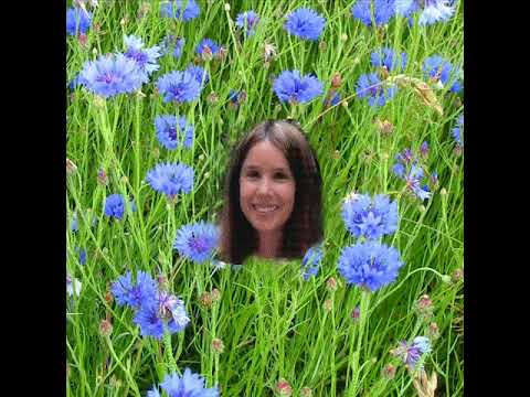 Kate Wolf CORNFLOWER BLUE with lyrics below
