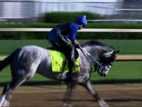 Raw: Horses Work Out Before Kentucky Derby