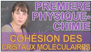 Cohésion des cristaux moléculaires - Physique-Chimie 1ère S - Les Bons Profs