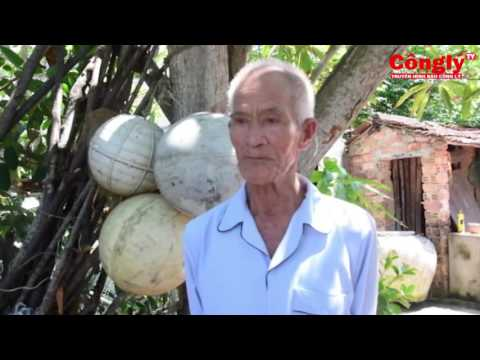 Quảng Nam: Nước nhiễm mặn do nuôi tôm tràn lan