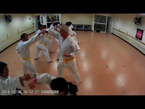 Whole Karate Class 3-8-2018