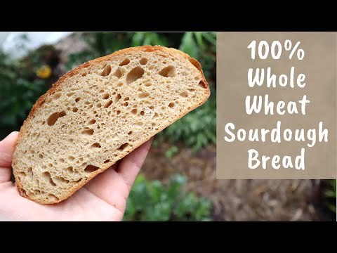 Whole Wheat Sourdough Bread (extended Cold Autolyse Method)