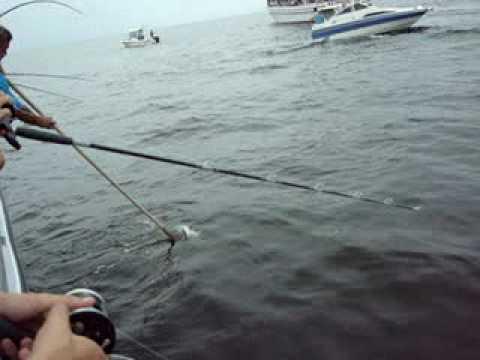 City island fishing aboard the island current ii youtube for City island fishing