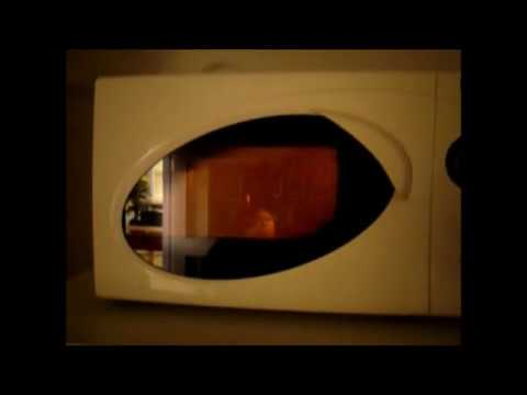 Egg Explodes In Microwave Oven Do Not Try This At Home