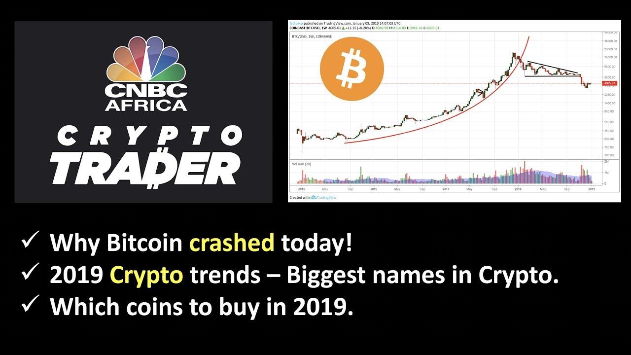 Why Bitcoin Crashed today  2019 Crypto Market Predictions