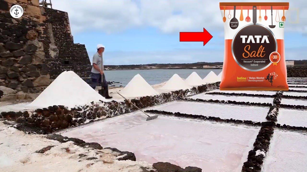 इसतरहफैक्ट्रीमेंबनायाजाताहैटाटानमक( TATA SALT)  Salt Making Factory