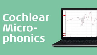 Recording the Cochlear Microphonic (CM) - Interacoustics