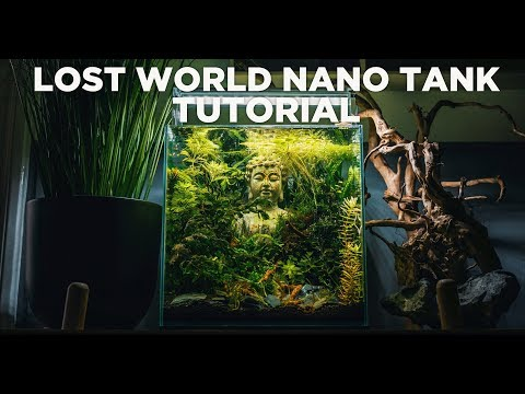 How To Make Your Own LOST WORLD Nano Tank - STEP BY STEP TUTORIAL