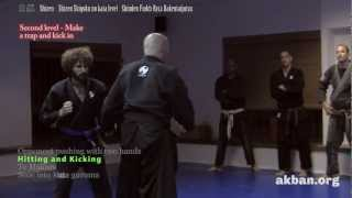 Aikido principles in Ninjutsu, Shizen Shigoku level, Shinden Fudo Ryu - Ninjutsu training AKBAN
