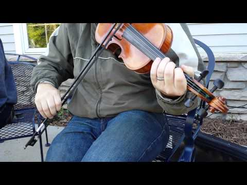 Seven Nights in Ireland fiddle