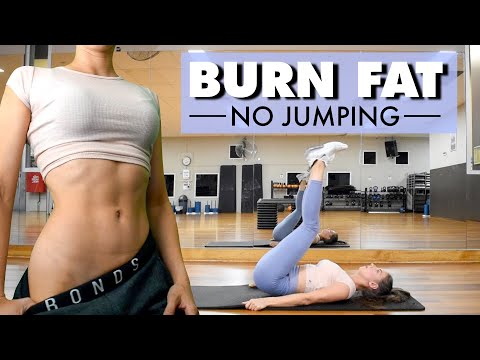 BURN FAT AND GET ABS (No Jumping) Home Workout | No Equipment