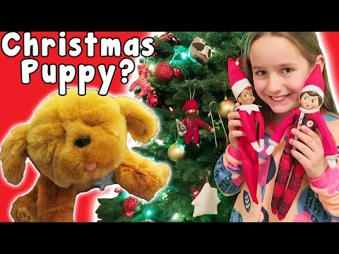 Christmas Morning Special Madison Gets a Puppy and We Say Goodbye to the Elves