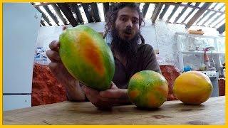 How To Pick A Pick A Good Papaya At The Market