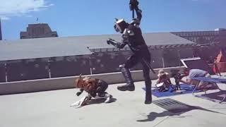 Kamen Rider behind the scene