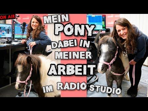 Mein Pony dabei in meiner Arbeit im Radio Studio!!