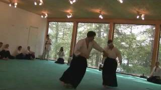 Aikido Montreux, Evolutionary Aikido, Facing the Unknown