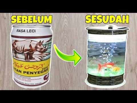 Cara Membuat Aquarium Ikan Cupang Youtube