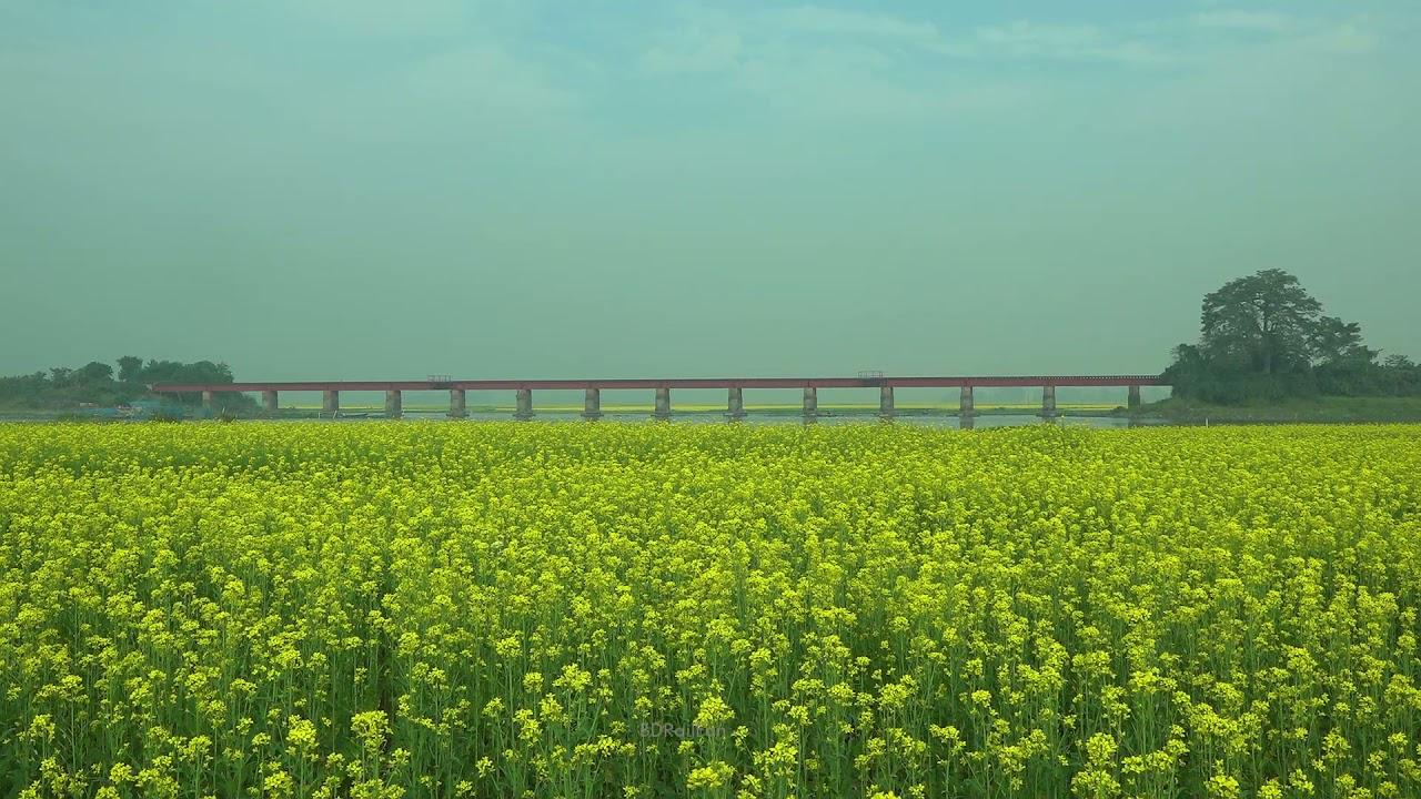 Prefect location for Railfanning || Baunjan Rail Bridge, DILPASHAR, Vangura, Pabna