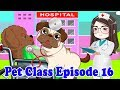Bon lie Bin to Try to be a doctor | Pets Class 016 | Tho Nguyen Animation