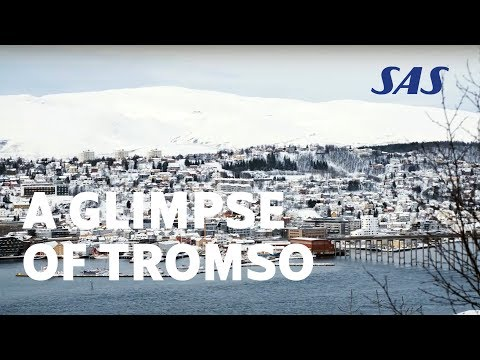 A Glimpse of Trondheim City: Visit the Old Town, Bakklandet and Norway's most important church | SAS