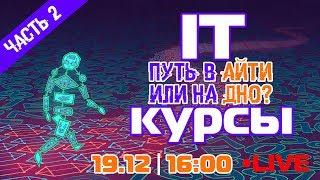 IT-курсы: путь в айти или на дно? ЧАСТЬ 2 | !LIVE! 19.12 в 16:00