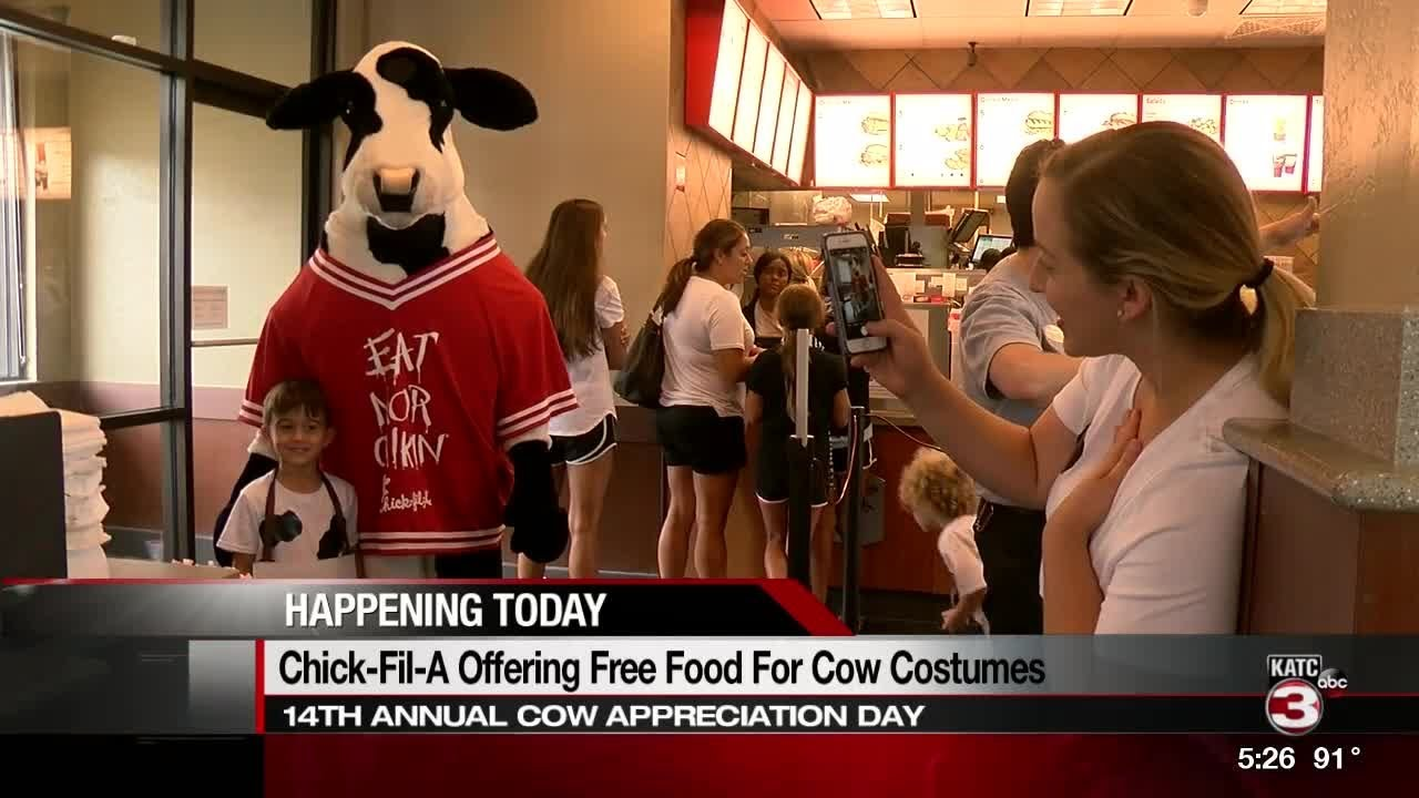 Mooo: Chick-fil-A offering free food to anyone dressed like a cow today