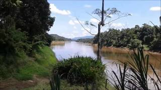 Thattekad Bird Sanctuary (Tourism in Kerala)