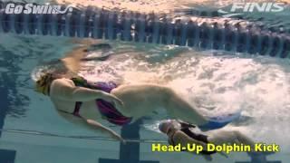 Butterfly - Head-Up Dolphin Kick